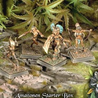 Freebooter's Fate Amazons Miniatures